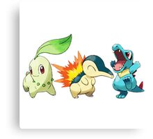 pokemon starter 1 Canvas Print