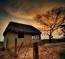 hogar dulce hogar by Kenny Holt