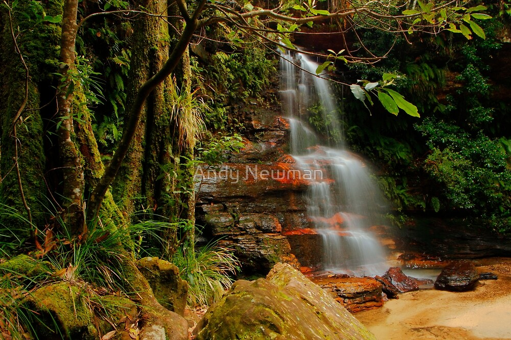 Federal Falls, NSW. by Andy Newman