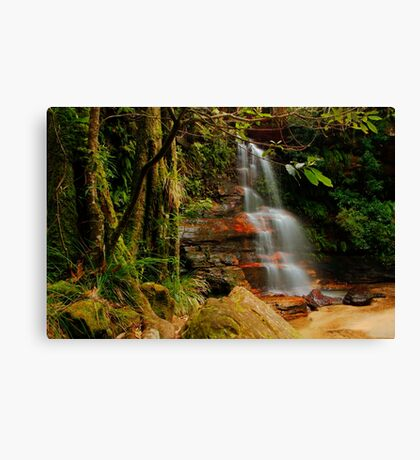 Federal Falls, NSW. Canvas Print