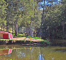 The Perfect Campsite by Terry Everson