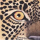 Leopard's Eye by Rob Johnston