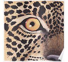 Leopard's Eye Poster