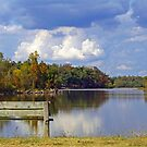 Early signs of Fall by Susan Blevins