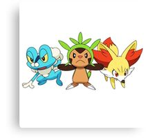 pokemon starter 7 Canvas Print