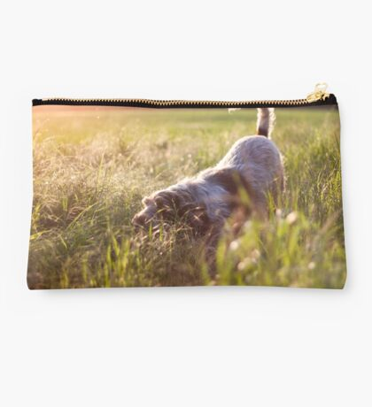 Brown Roan Italian Spinone Dog in Action Studio Pouch