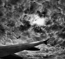 flight into apocalypse by Matthew Larsen