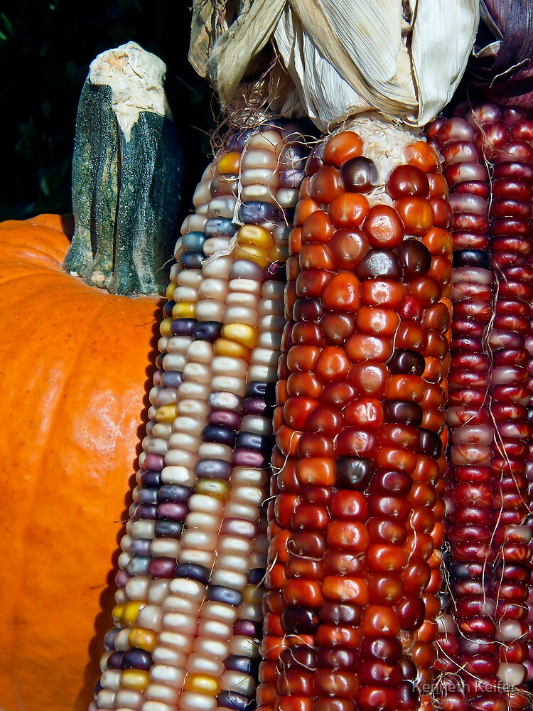 Indian Corn and Pumpkin by Kenneth Keifer