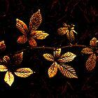 Gold Leaf by Simon Pattinson