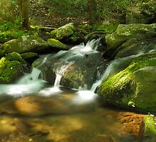 Mountain Music by Gary L   Suddath