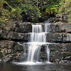 Waterfall - Bowlees Beck by Chris Monks