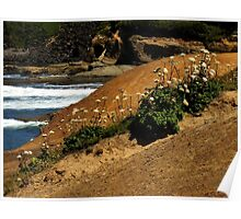 Coastal Nature ~ Part Three Poster