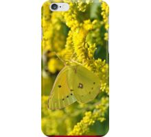 Clouded Sulfur (iPhone Case) iPhone Case/Skin