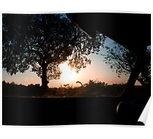 A Silhouette Sunset through the windscreen Poster