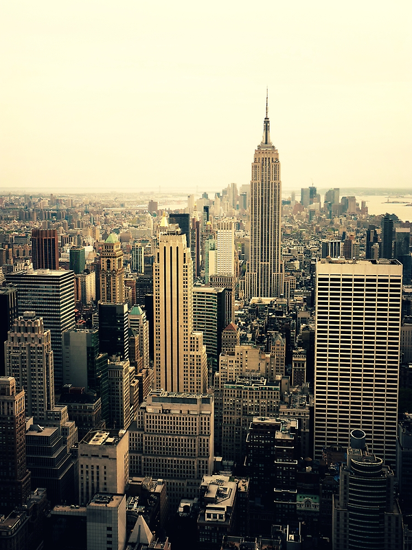 The Empire State Building and the New York City skyline by Vivienne Gucwa