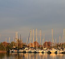 Sunset On Fall Colors..Etobicoke Yacht Club by NewfieKeith