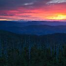 Dawn's End (Original) - Clingman's Dome, Great Smoky Mountains National Park by Matthew Kocin