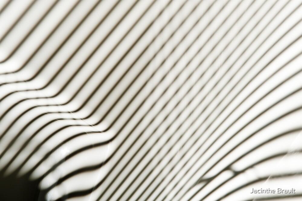 Lines Everywhere by Jacinthe Brault
