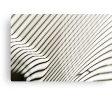 Lines Everywhere Canvas Print