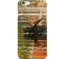 Bull Moose Crossing Creek iPhone Case/Skin