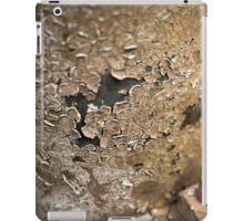 Eaten Away iPad Case/Skin