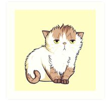 This cat is so done. Art Print