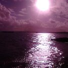 Purple Dream. by tyia