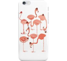 Flamingo's iPhone Case/Skin