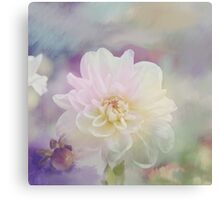 White Dahlia flower in a pastel environment Canvas Print