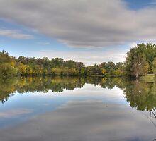 Waldon Pond Fall 2015 II  by Rich Fletcher