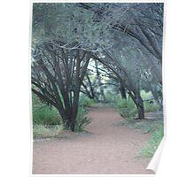 pathways, Uluru walk 2 Poster