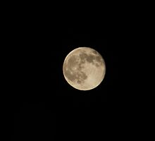 Full Moon 10-12 2011 by DonnaMoore