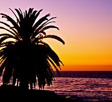 San Diego Sunset by Jessica Karran