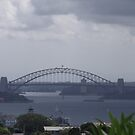 Grey Skies over Sydney Harbour by Judy Woodman