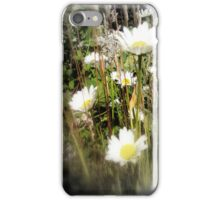 daisies 3 iPhone Case/Skin
