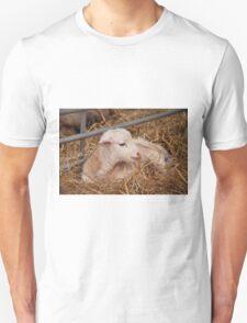 Young Lamb Unisex T-Shirt