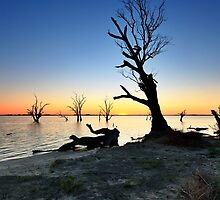 Lake Bonney Sunset by Bill  Robinson