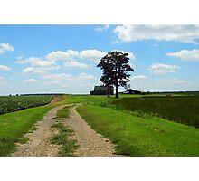 Arkansas Farm Land Photographic Print