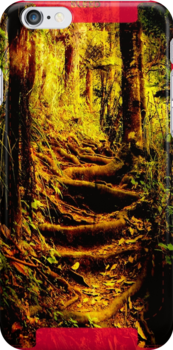 iphone, forest. by Lynne Haselden