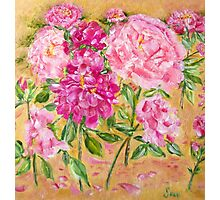 Pink Peonies and Roses Photographic Print