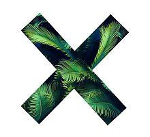 Palm X. by leahcothran