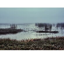 Mist on the water Photographic Print
