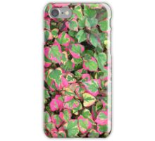 "Houttuynia cordata ""Chameleon"" for iPhone iPhone Case/Skin"