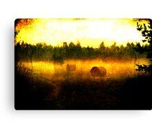 Hayballs Gone Wild Canvas Print