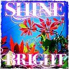 Shine Bright by Sarah ORourke