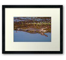 Crocodile on the South Alligator River, Kakadu National Park, Australia Framed Print