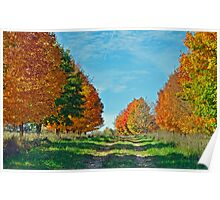 Maple Tree Lane Poster