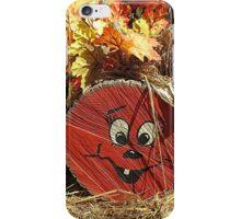 iPhone Case Fall iPhone Case/Skin