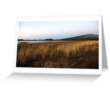 Davis Lake landscape... Greeting Card