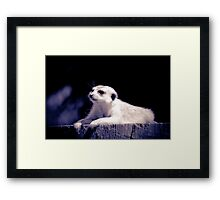 Good life in The Blues  Framed Print